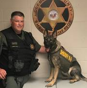 Cleburne County Sheriff's Office K9 Xinie has received donation of body armor